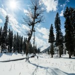 Photos of Lidderwat, Kashmir in summers and winters